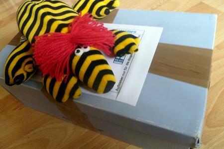 Hildi liegt auf dem Paket