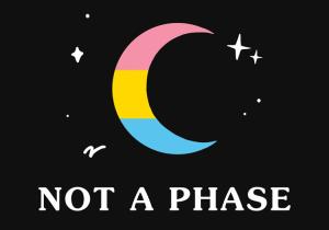 Pansexual - Not A Phase / Pansexuell - nicht nur eine Phase
